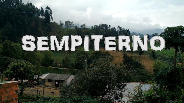 Festival enSerio - Premio mejor cortometraje de ficción - Sempiterno