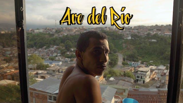 Ave del río - Largometraje