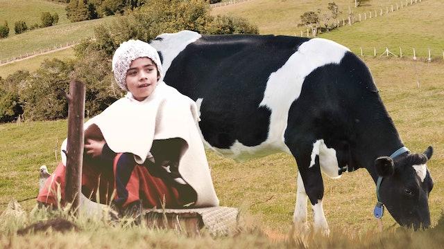 La vía láctea - Trailer