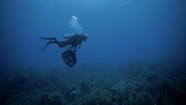 Madre Agua - E6: Orgía marina