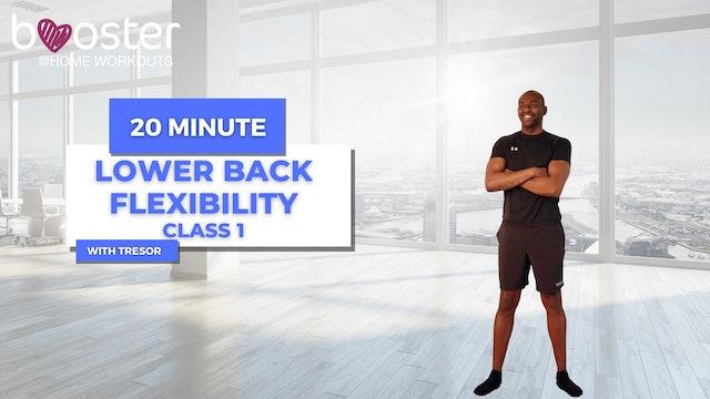 lower back reinforcement series - week 1 class 1