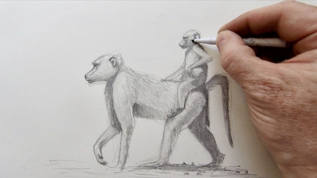Monkey Sketch II