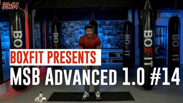 MSB Advanced 1.0 #14