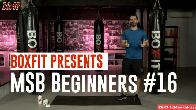 MSB Beginners #16