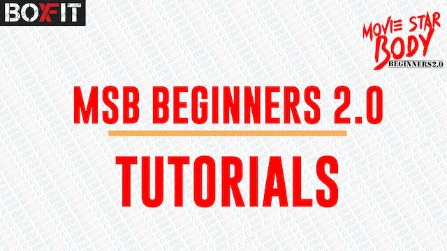 MSB Beginners Tutorial 2.0