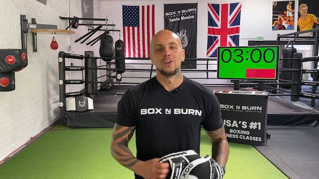 Pure Boxing | Shark: Intermediate/Adv...