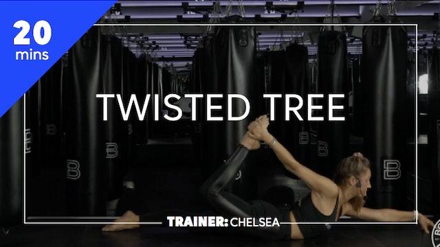 20min Twisted Tree