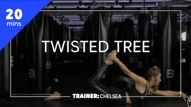 20min Twisted Tree