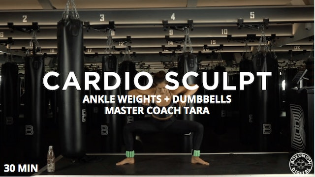 30min Cardio Sculpt w/ Ankle Weights & Dumbbells