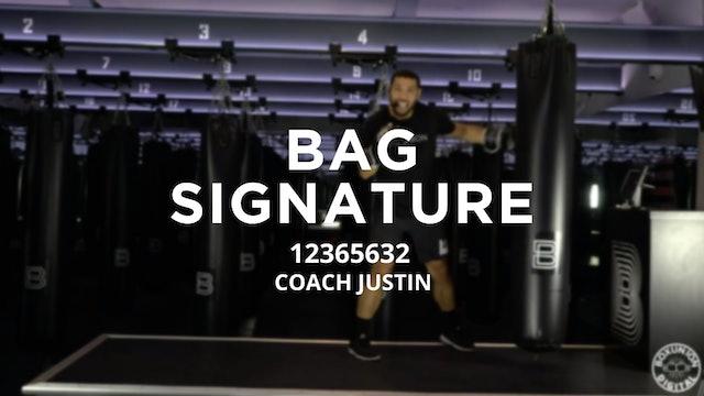 Bag Signature: 12365632