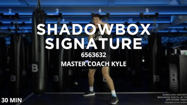 30min Low Impact Shadowbox