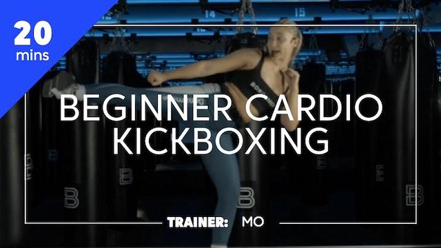 20min Beginner Cardio Kickboxing