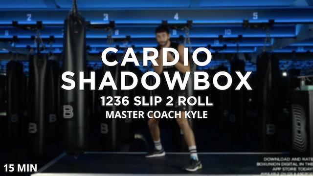 15min Cardio Shadowbox