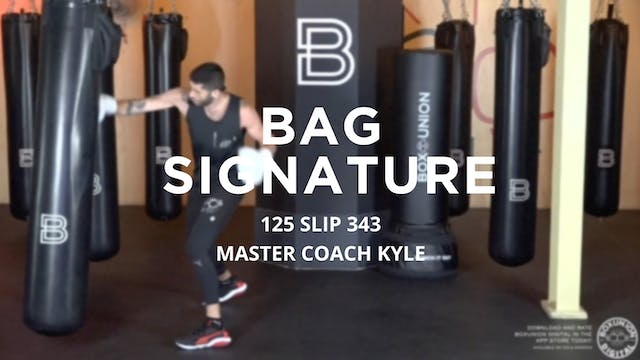 Bag Signature: 125 SLIP 343
