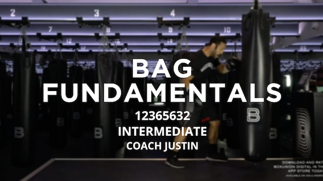 Bag Fundamentals - Intermediate: 12365632
