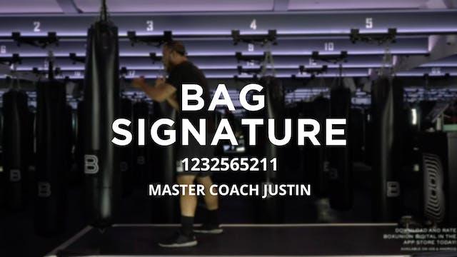 Bag Signature: 1232565211