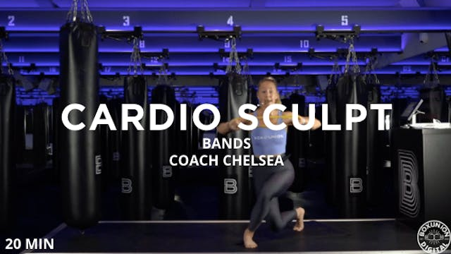 20min Cardio Sculpt w/ Mini Bands