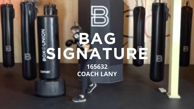 Bag Signature: 165632