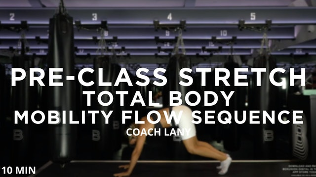 Pre-Class Warmup - Total Body - Mobility Flow Sequence