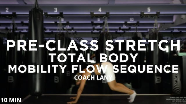 Pre-Class Stretch - Total Body: Mobil...
