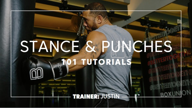 How To - Stance & Punches
