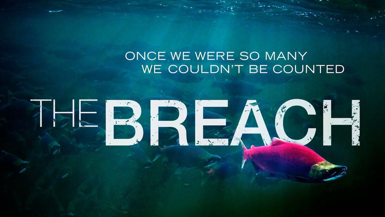 The Breach - Feature Documentary Film