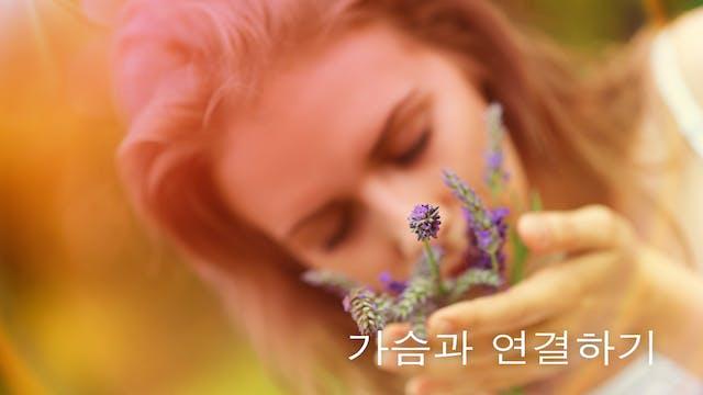 가슴과 연결하기 (Korean)