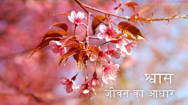 Breath as Life (Hindi)