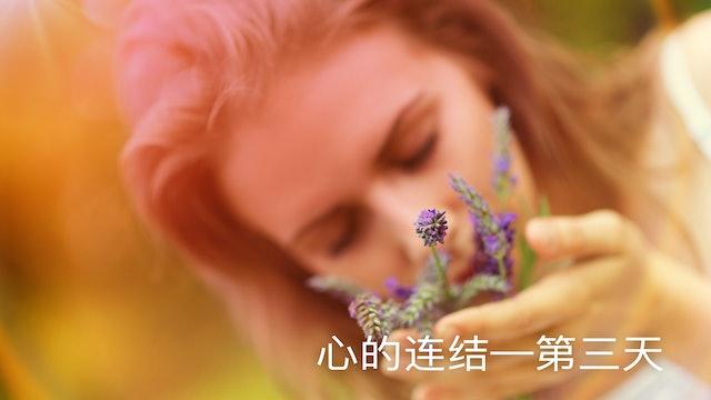 第三天:心的连结 (Chinese)