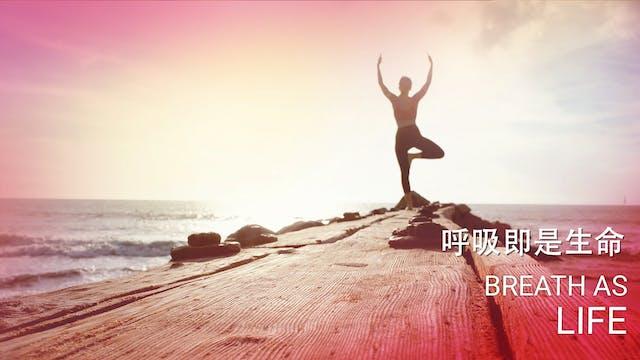 Breath as life - 呼吸即是生命 (Chinese)