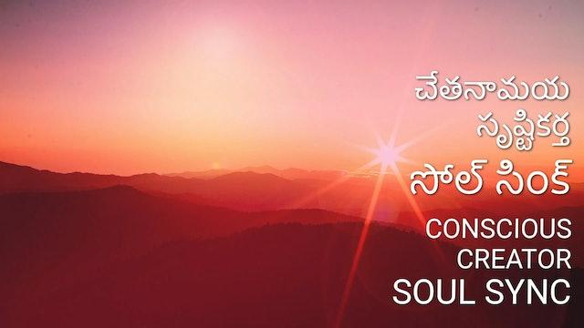 చేతనామయ సృష్టికర్త - సోల్ సింక్  Concious creater - Soul Sync (Telugu)