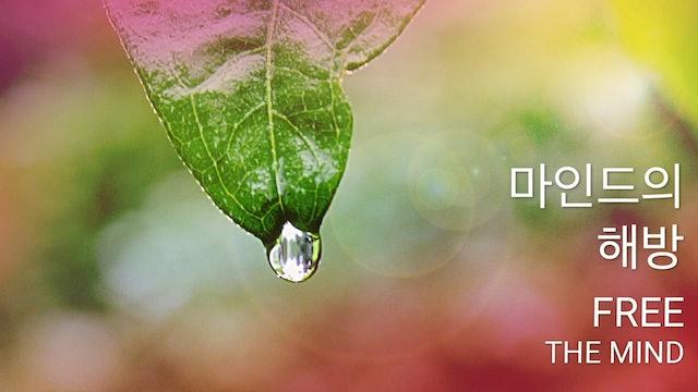 마인드의 해방 (Korean)