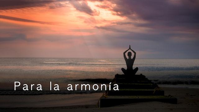Para la armonía (Spanish)