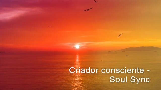 Criador consciente Soul Sync (Portugu...