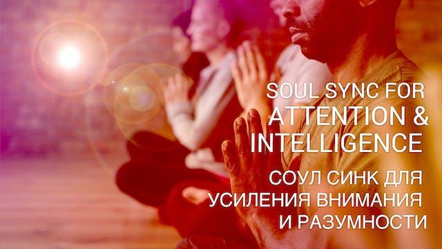 06 Соул Синк для усиления внимания и ...