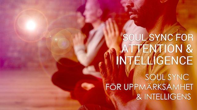 06 Soul Sync för uppmärksamhet och intelligens (Swedish)