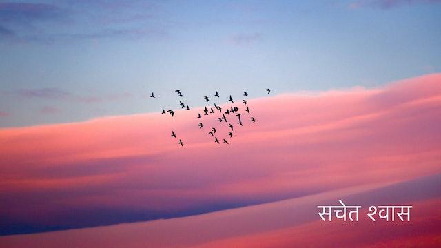 सचेत होकर श्वास लेना - Conscious Breathing (Hindi)