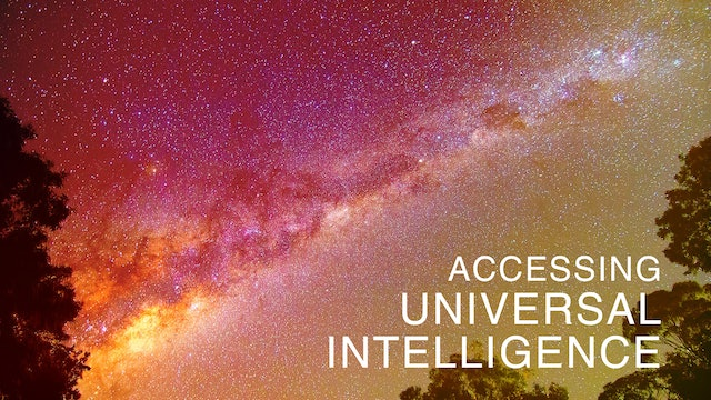 Accessing Universal Intelligence: Day 4 (Night Meditation)