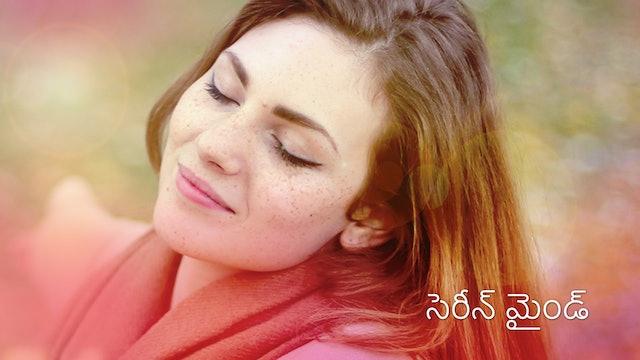 సెరీన్ మైండ్: రెండవ రోజు  Day 2 - Serene Mind (Telugu)