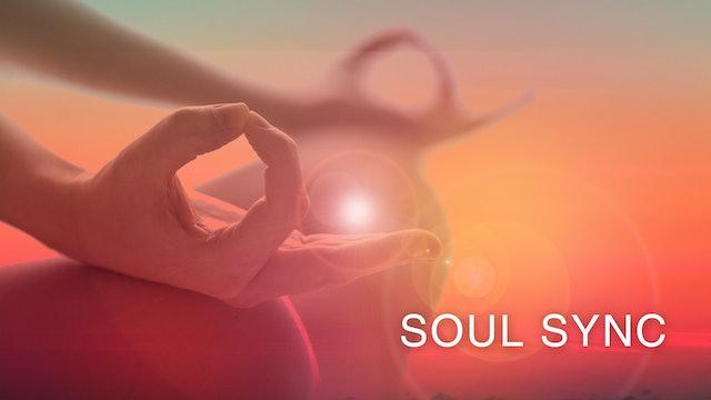 Soul Sync (English)