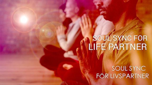 03 Soul Sync för Livspartner (Swedish)