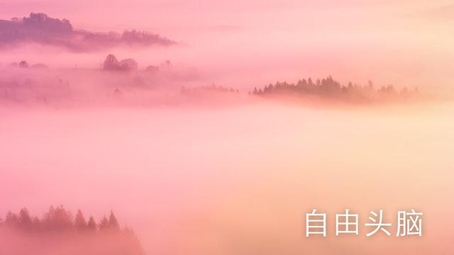自由头脑 (Chinese)