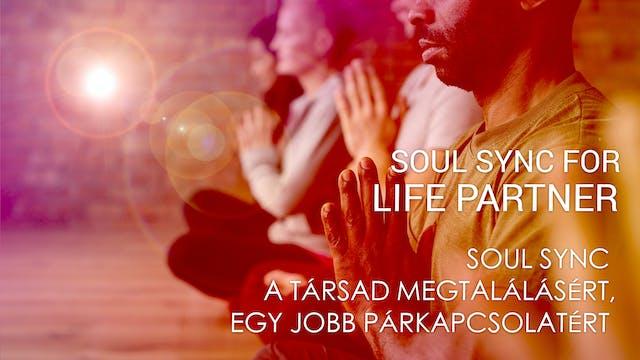 03 Soul Sync a társad megtalálásért, ...