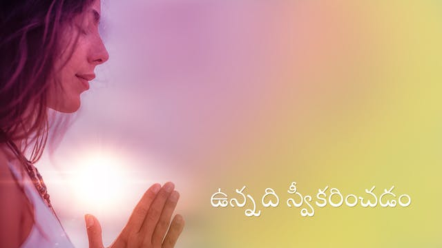 Accepting What Is (Telugu)