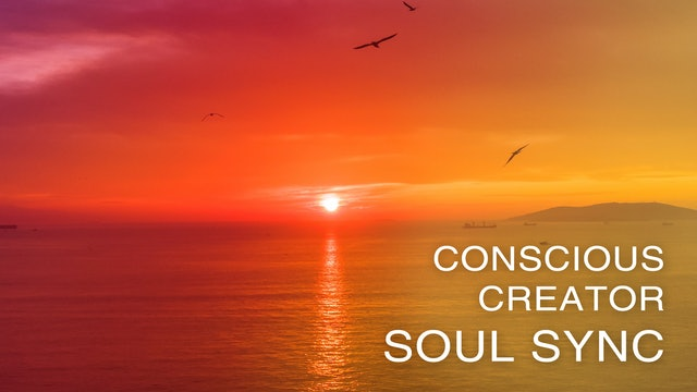 Conscious Creator - Soul Sync