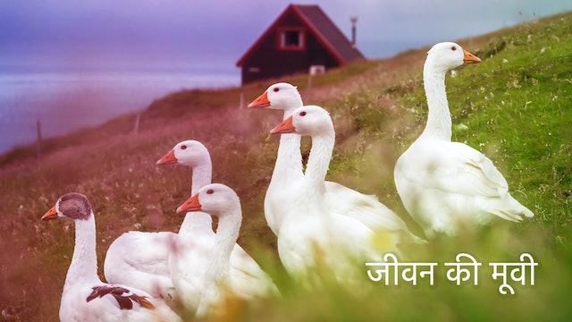 जीवन की मूवी The Movie of Life  (Hindi)
