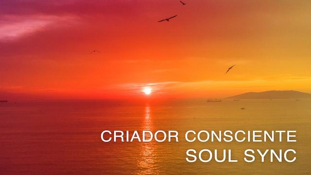 Criador Consciente - Soul Sync (Portuguese)