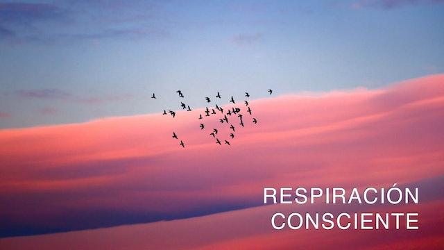 Respiración Consciente (Spanish)