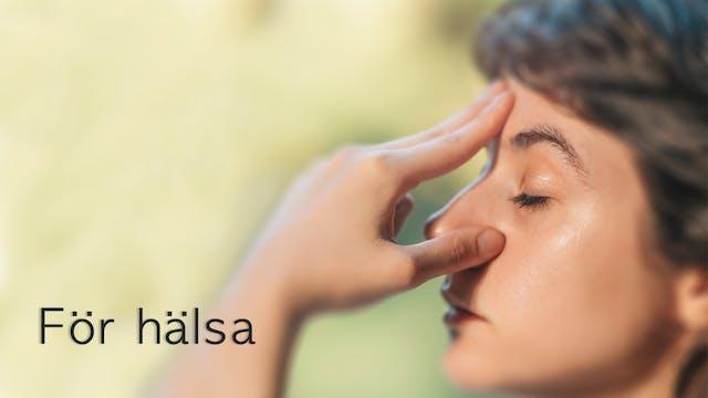 Meditation for Health (Swedish)