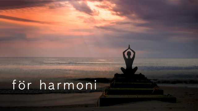 Meditation for Harmony (Swedish)